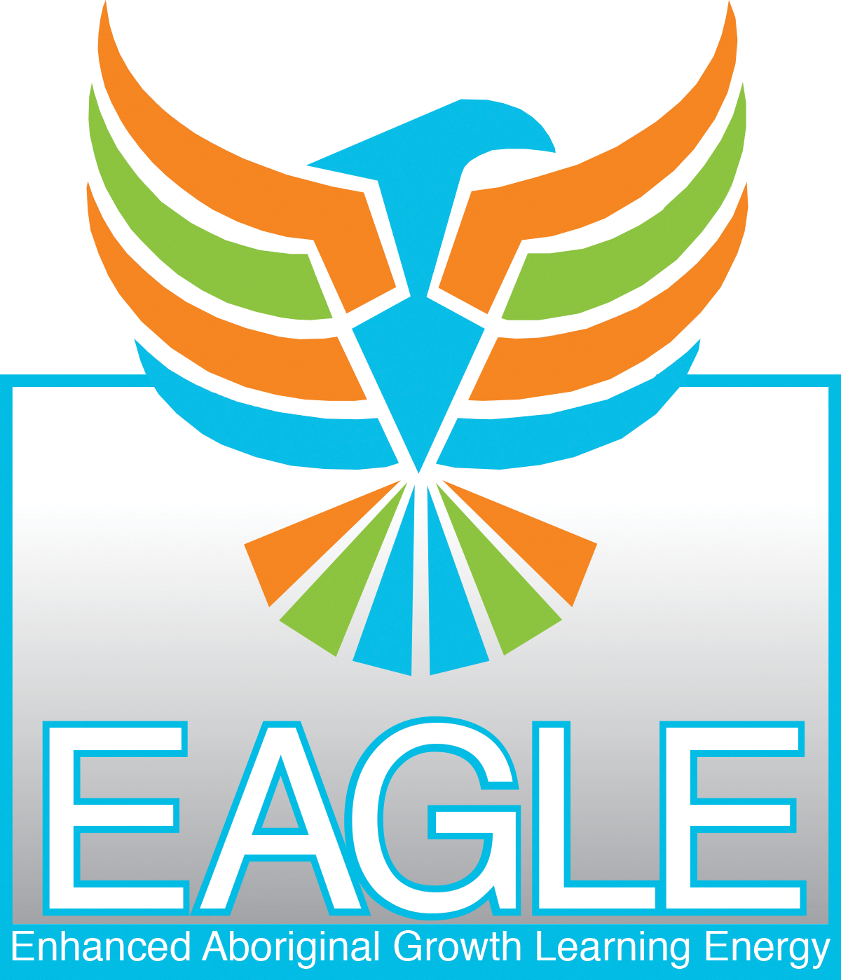 Zedi EAGLE program