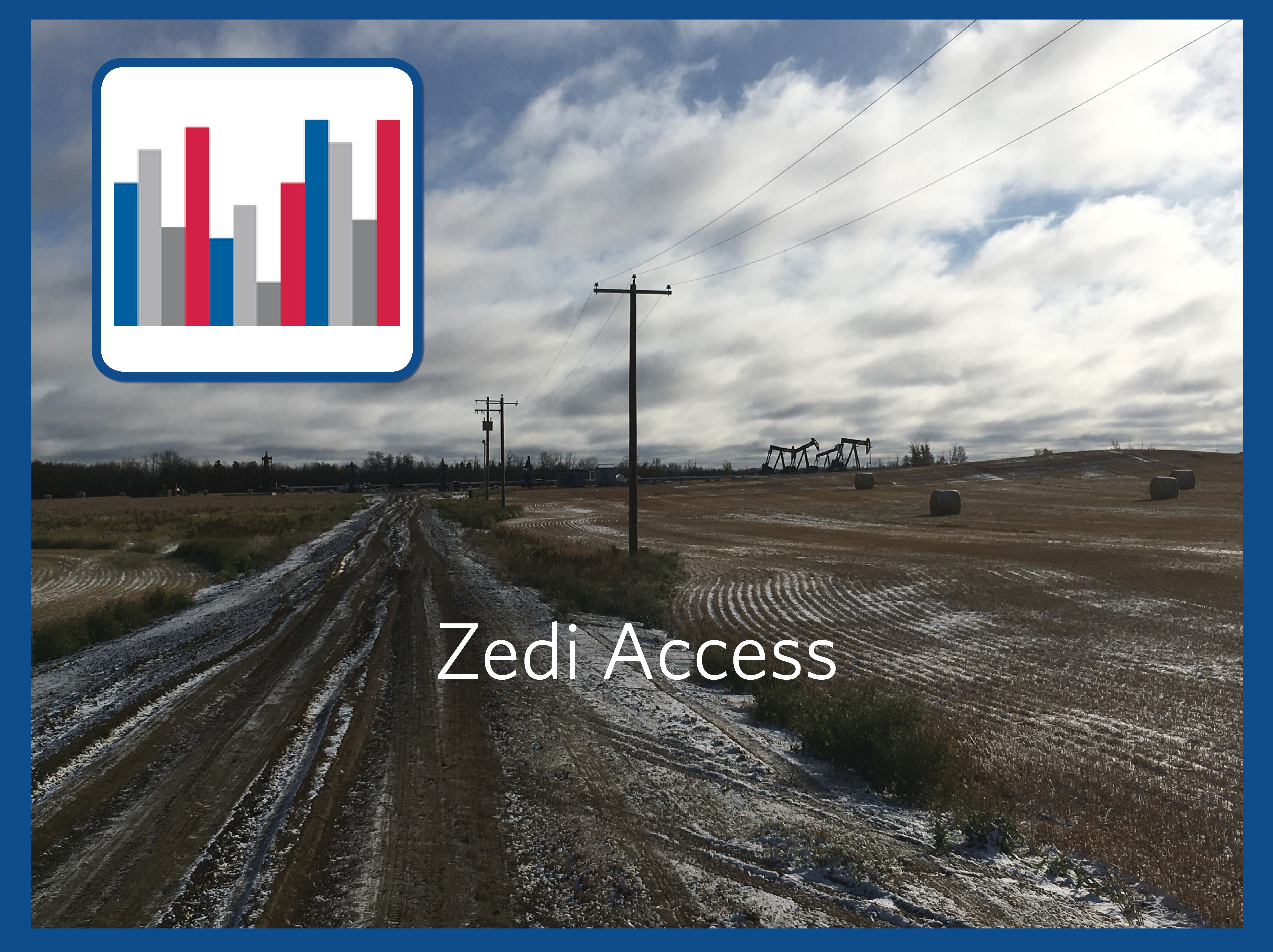 Zedi Access opil and gas production software